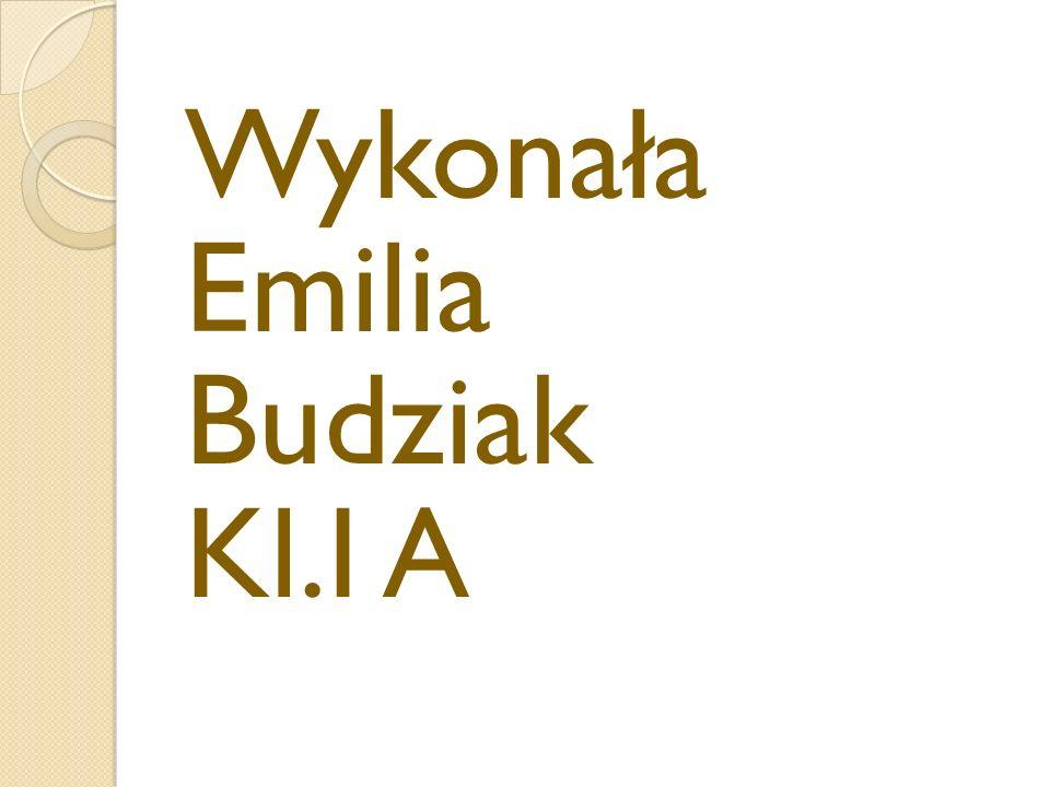 """Bibliografia www.sciaga.pl www.chemia.panoramix.net.pl Wiem –multimedialna encyklopedia wiedzy Podręcznik """"Ciekawa Chemia cz.1"""