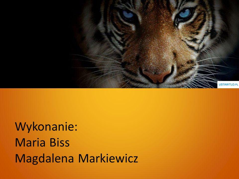 Wykonanie: Maria Biss Magdalena Markiewicz
