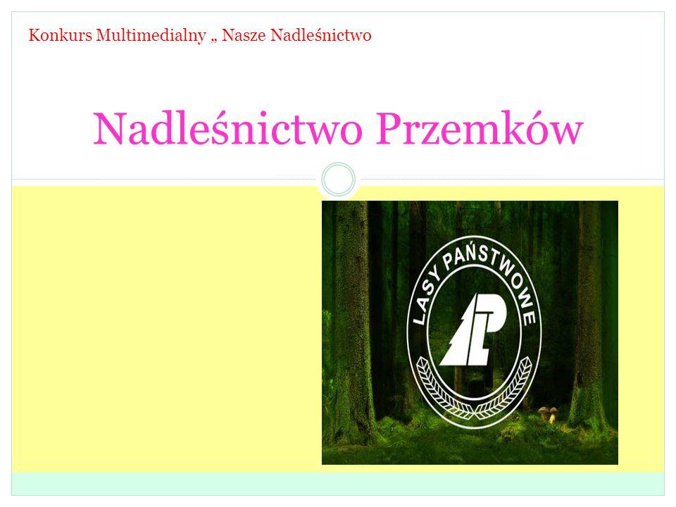 """Nadleśnictwo Przemków Konkurs Multimedialny """" Nasze Nadleśnictwo"""