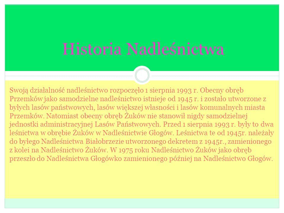 Historia Nadleśnictwa Swoją działalność nadleśnictwo rozpoczęło 1 sierpnia 1993 r. Obecny obręb Przemków jako samodzielne nadleśnictwo istnieje od 194