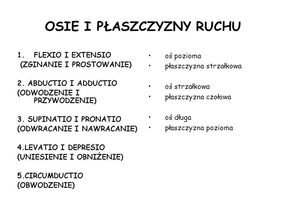 OSIE I PŁASZCZYZNY RUCHU 1.FLEXIO I EXTENSIO (ZGINANIE I PROSTOWANIE) 2.