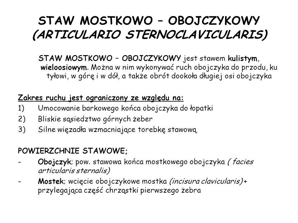 STAW MOSTKOWO – OBOJCZYKOWY (ARTICULARIO STERNOCLAVICULARIS) STAW MOSTKOWO – OBOJCZYKOWY jest stawem kulistym, wieloosiowym.