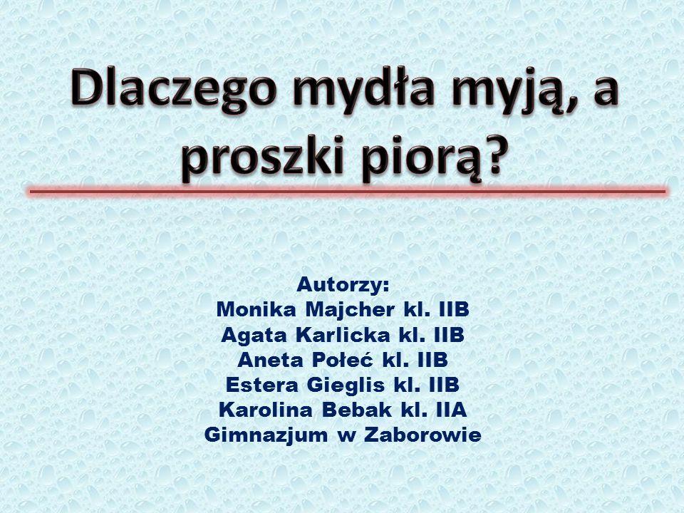 Autorzy: Monika Majcher kl. IIB Agata Karlicka kl.