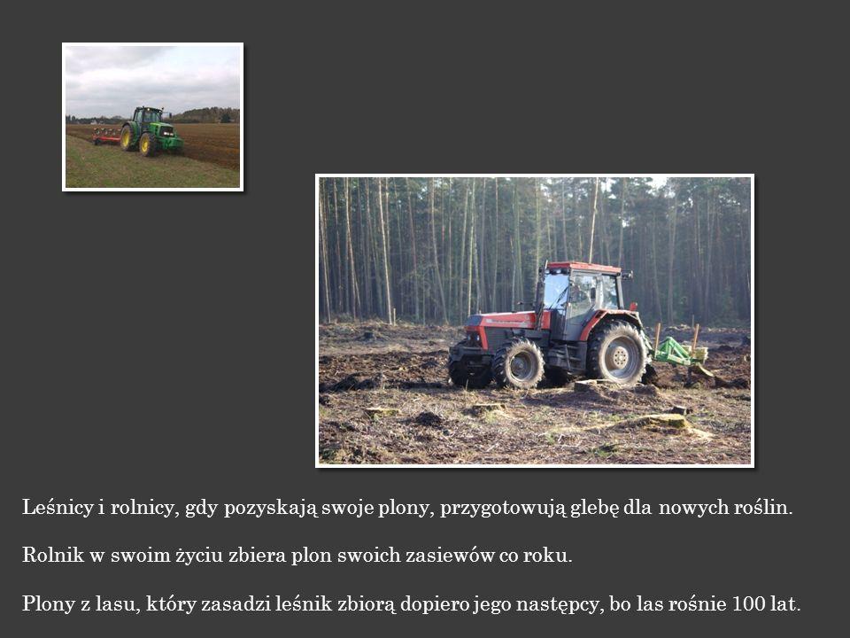 Gdy zboże dojrzeje rolnicy zbierają je, aby otrzymać dobre ziarno. Leśnicy pielęgnują las, aby dojrzał, a gdy dojrzeje pozyskują z niego drewno.