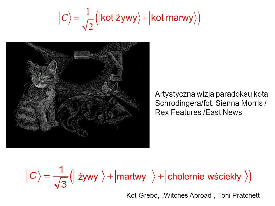 """żywy martwycholernie wściekły Kot Grebo, """"Witches Abroad , Toni Pratchett Artystyczna wizja paradoksu kota Schrödingera/fot."""