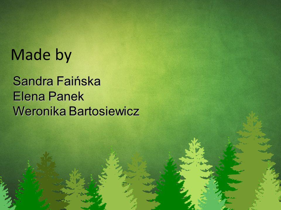 Made by Sandra Faińska Elena Panek Weronika Bartosiewicz