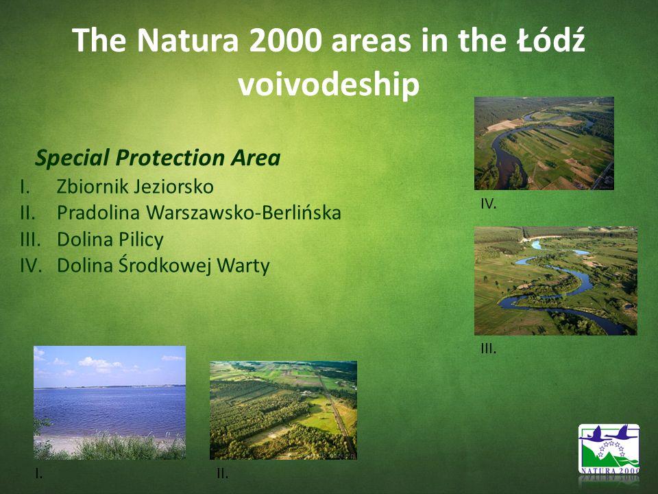 The Natura 2000 areas in the Łódź voivodeship Special Protection Area I.Zbiornik Jeziorsko II.Pradolina Warszawsko-Berlińska III.Dolina Pilicy IV.Doli