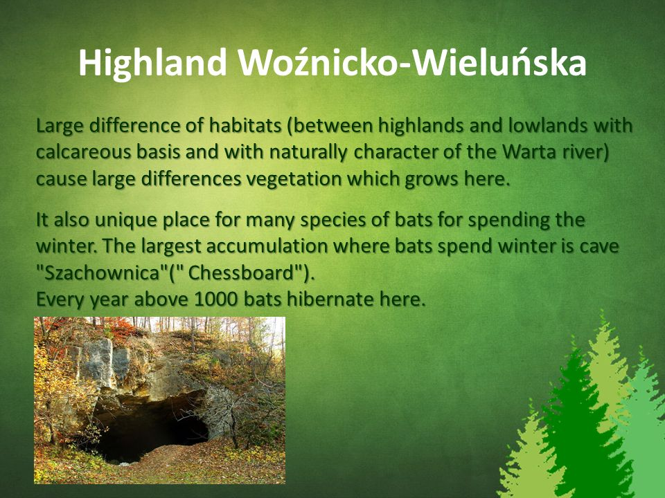 Highland Woźnicko-Wieluńska Large difference of habitats (between highlands and lowlands with calcareous basis and with naturally character of the War