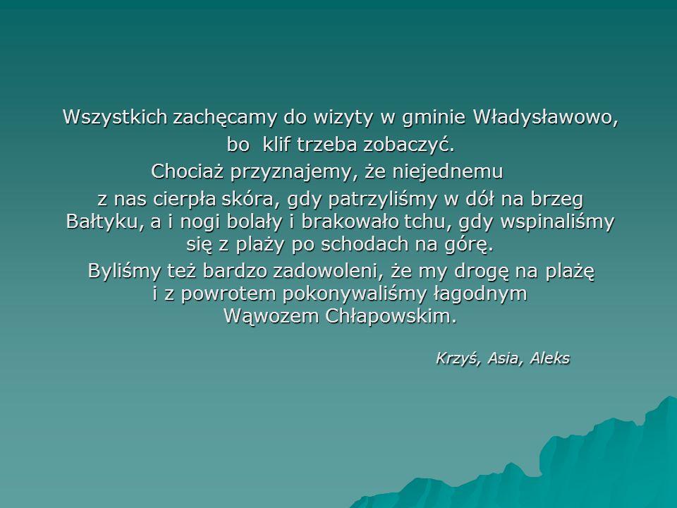 Wszystkich zachęcamy do wizyty w gminie Władysławowo, Wszystkich zachęcamy do wizyty w gminie Władysławowo, bo klif trzeba zobaczyć.
