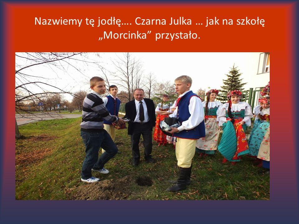 """Nazwiemy tę jodłę…. Czarna Julka … jak na szkołę """"Morcinka"""" przystało."""