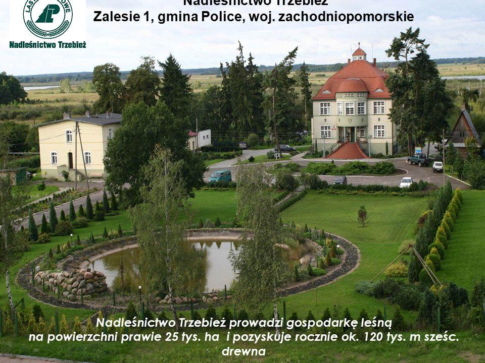 Nadleśnictwo Trzebież Zalesie 1, gmina Police, woj.