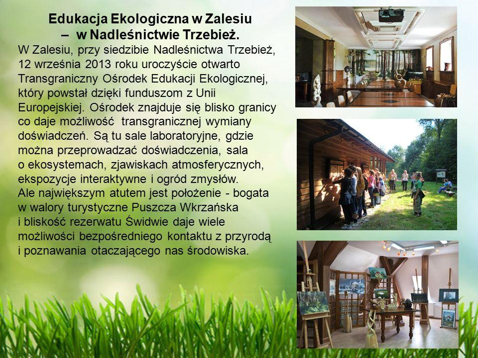 Edukacja Ekologiczna w Zalesiu – w Nadleśnictwie Trzebież.