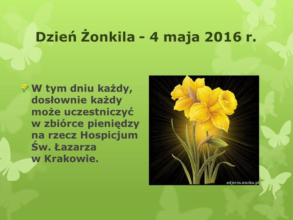 Dzień Żonkila - 4 maja 2016 r.