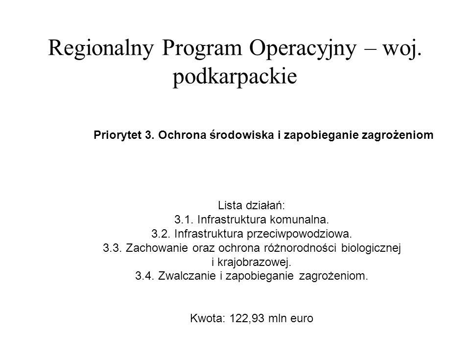Regionalny Program Operacyjny – woj. podkarpackie Priorytet 3.