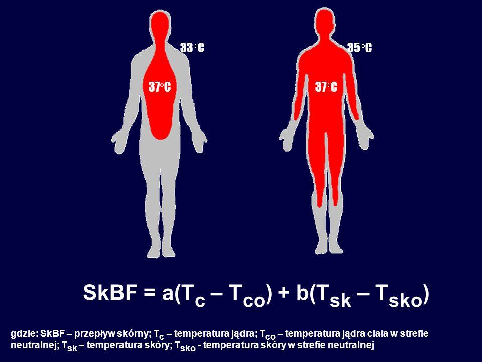 37  C 35  C33  C SkBF = a(T c – T co ) + b(T sk – T sko ) gdzie: SkBF – przepływ skórny; T c – temperatura jądra; T co – temperatura jądra ciała w strefie neutralnej; T sk – temperatura skóry; T sko - temperatura skóry w strefie neutralnej