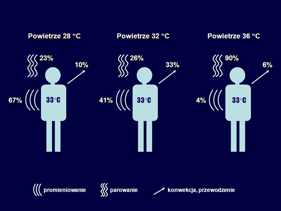 Powietrze 28  C Powietrze 32  C Powietrze 36  C 67%67%41%41% 4% 4% 23%23%26%26%90%90% 10%10%33%33%6%6% 33  C promieniowanieparowaniekonwekcja, przewodzenie