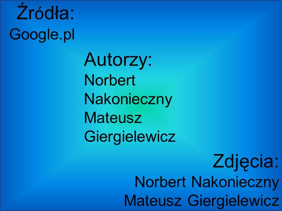 Źr ó dła: Google.pl Autorzy: Norbert Nakonieczny Mateusz Giergielewicz Zdjęcia: Norbert Nakonieczny Mateusz Giergielewicz