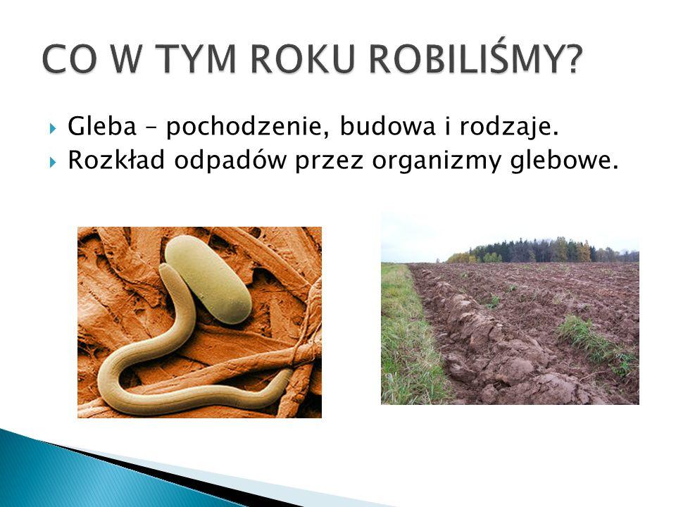  Gleba – pochodzenie, budowa i rodzaje.  Rozkład odpadów przez organizmy glebowe.
