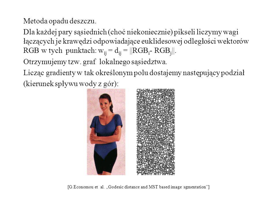"""Otrzymujemy spójne składowe odpowiadające zlewiskom, które wyznaczają podział obrazu (niebezpieczeństwo stanowi duża """"dziura , wokół której są mało różniące się obiekty – wtedy przy podziale obrazu mogą zostać """"wessane – stają się nierozróżnialne)."""
