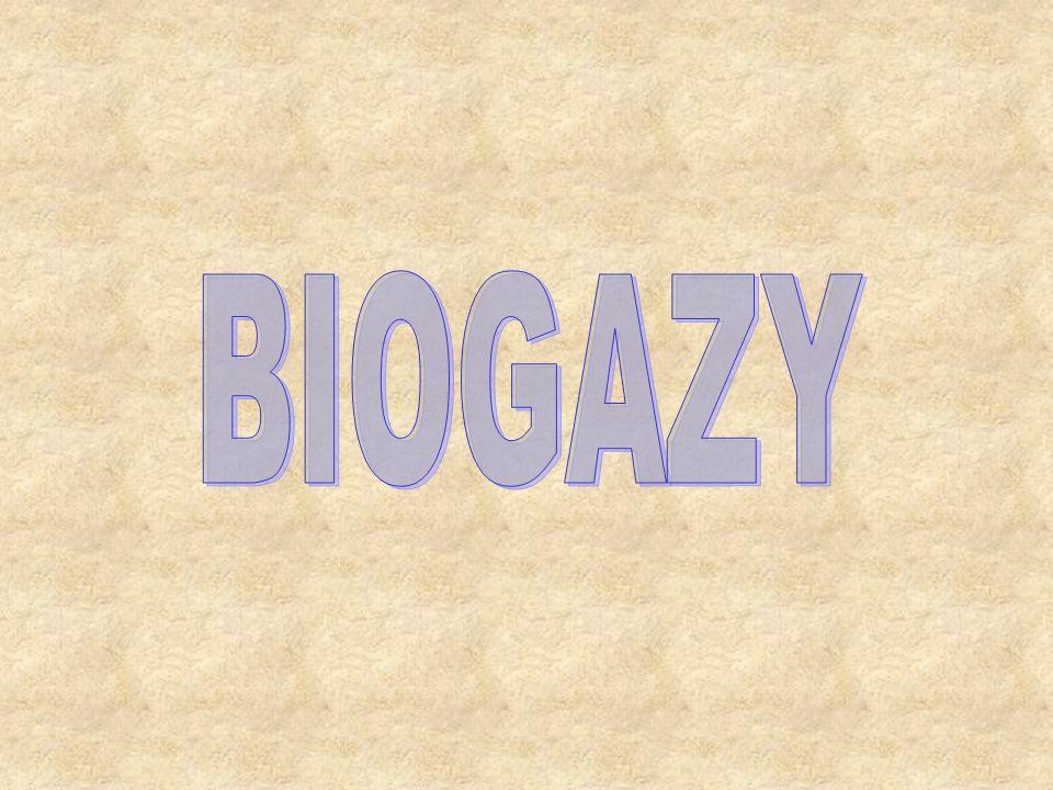 Biogaz, gaz wysypiskowy - gaz palny, produkt fermentacji anaerobowej związków pochodzenia organicznego (np.
