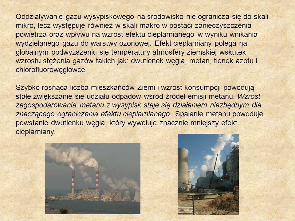 Oddziaływanie gazu wysypiskowego na środowisko nie ogranicza się do skali mikro, lecz występuje również w skali makro w postaci zanieczyszczenia powietrza oraz wpływu na wzrost efektu cieplarnianego w wyniku wnikania wydzielanego gazu do warstwy ozonowej.