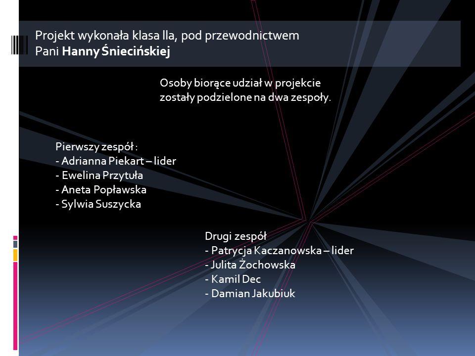 Projekt wykonała klasa lla, pod przewodnictwem Pani Hanny Śniecińskiej Osoby biorące udział w projekcie zostały podzielone na dwa zespoły.