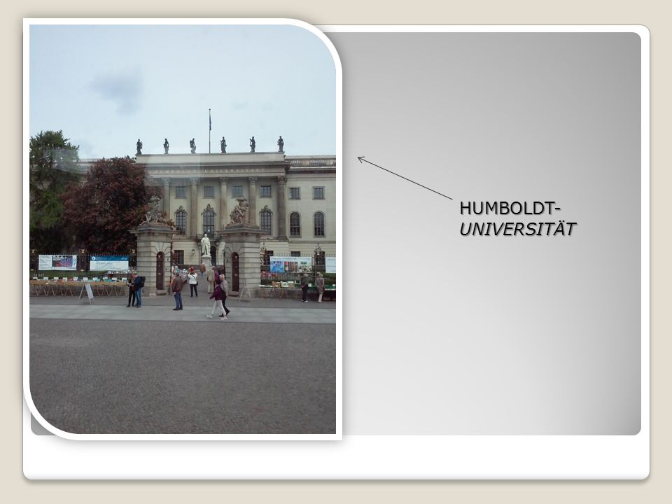 HUMBOLDT- UNIVERSITÄT