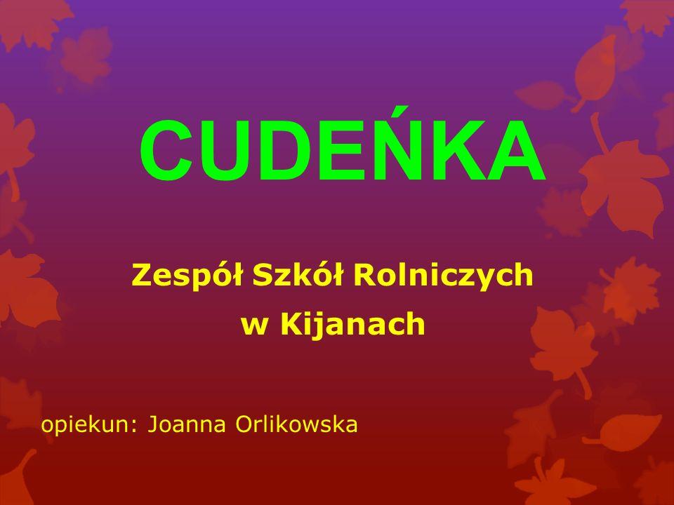 CUDEŃKA Zespół Szkół Rolniczych w Kijanach opiekun: Joanna Orlikowska