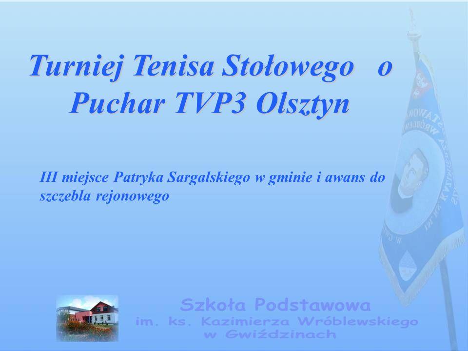 Turniej Tenisa Stołowego o Puchar TVP3 Olsztyn III miejsce Patryka Sargalskiego w gminie i awans do szczebla rejonowego