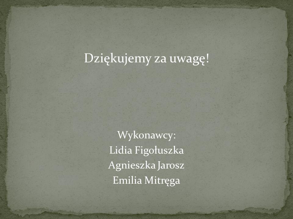 Dziękujemy za uwagę! Wykonawcy: Lidia Figołuszka Agnieszka Jarosz Emilia Mitręga