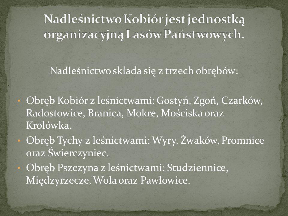 Nadleśnictwo składa się z trzech obrębów: Obręb Kobiór z leśnictwami: Gostyń, Zgoń, Czarków, Radostowice, Branica, Mokre, Mościska oraz Krolówka.