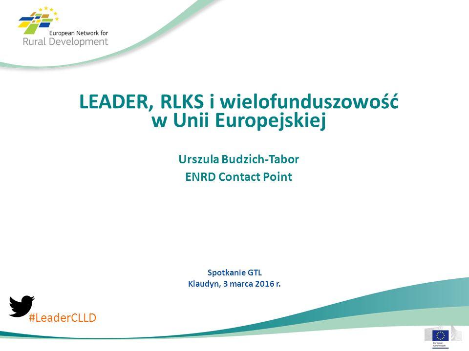 Porównanie RLKS w EFSI Fundusz Łączny budżet (wkład UE) Kraje Planowana liczba LGD EFMR20300 EFRROW282500 EFRR16 Brak informacji EFS13 € 6.900 M € 500 M € 1.200 M € 700 M Source: Information received from DGs, December 2015