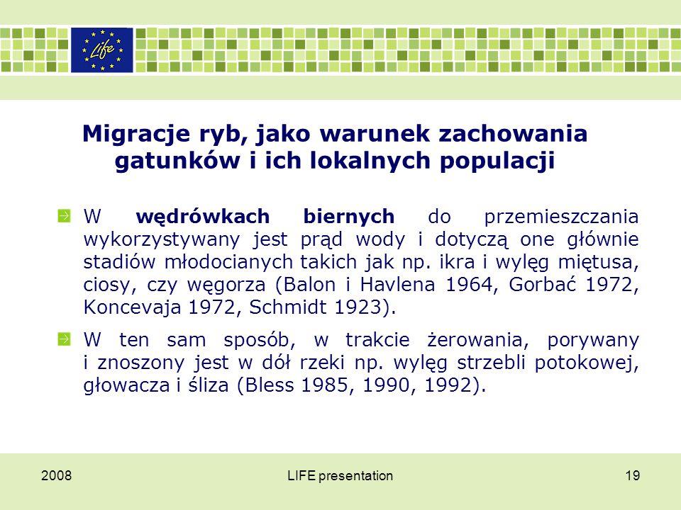 2008LIFE presentation19 Migracje ryb, jako warunek zachowania gatunków i ich lokalnych populacji W wędrówkach biernych do przemieszczania wykorzystywa