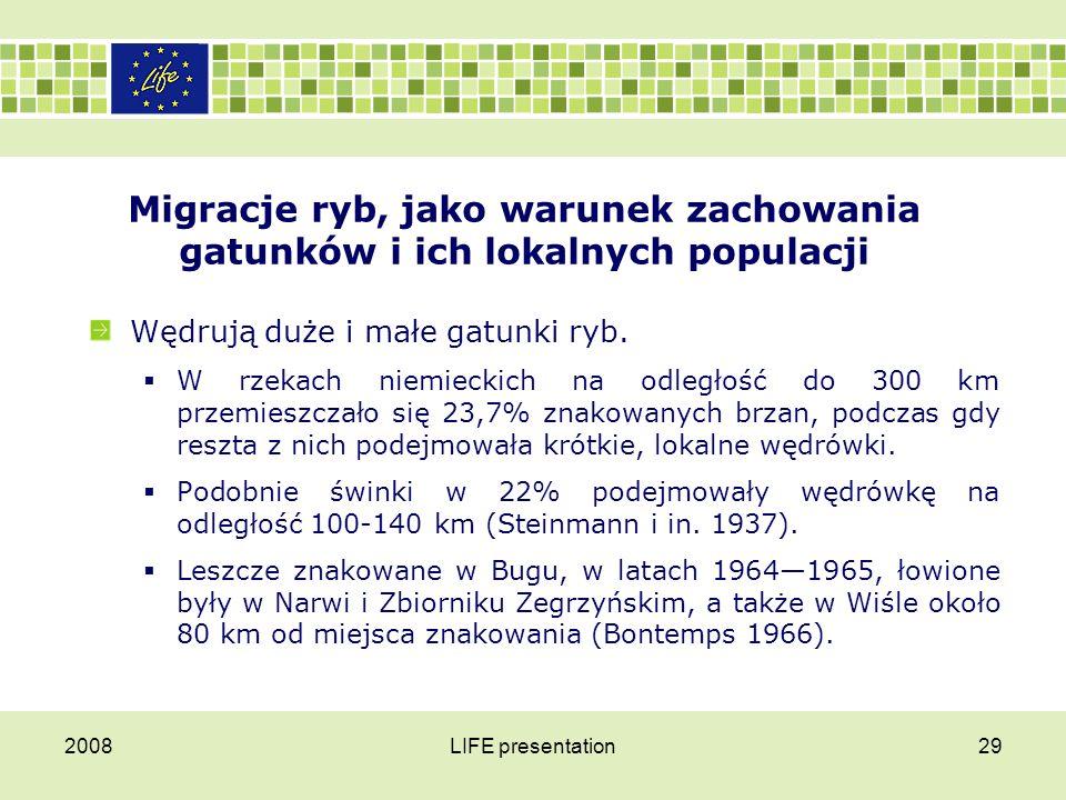 2008LIFE presentation29 Migracje ryb, jako warunek zachowania gatunków i ich lokalnych populacji Wędrują duże i małe gatunki ryb.  W rzekach niemieck
