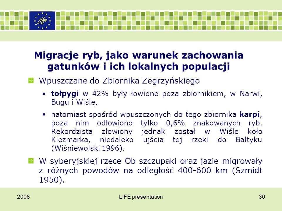 2008LIFE presentation30 Migracje ryb, jako warunek zachowania gatunków i ich lokalnych populacji Wpuszczane do Zbiornika Zegrzyńskiego  tołpygi w 42%