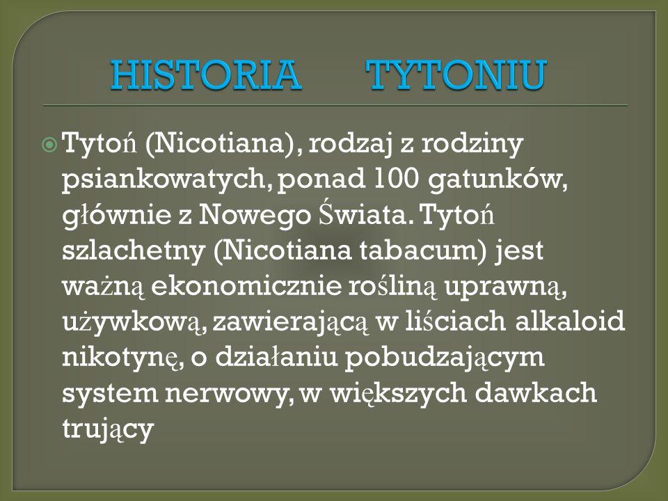  Tyto ń (Nicotiana), rodzaj z rodziny psiankowatych, ponad 100 gatunków, g ł ównie z Nowego Ś wiata.