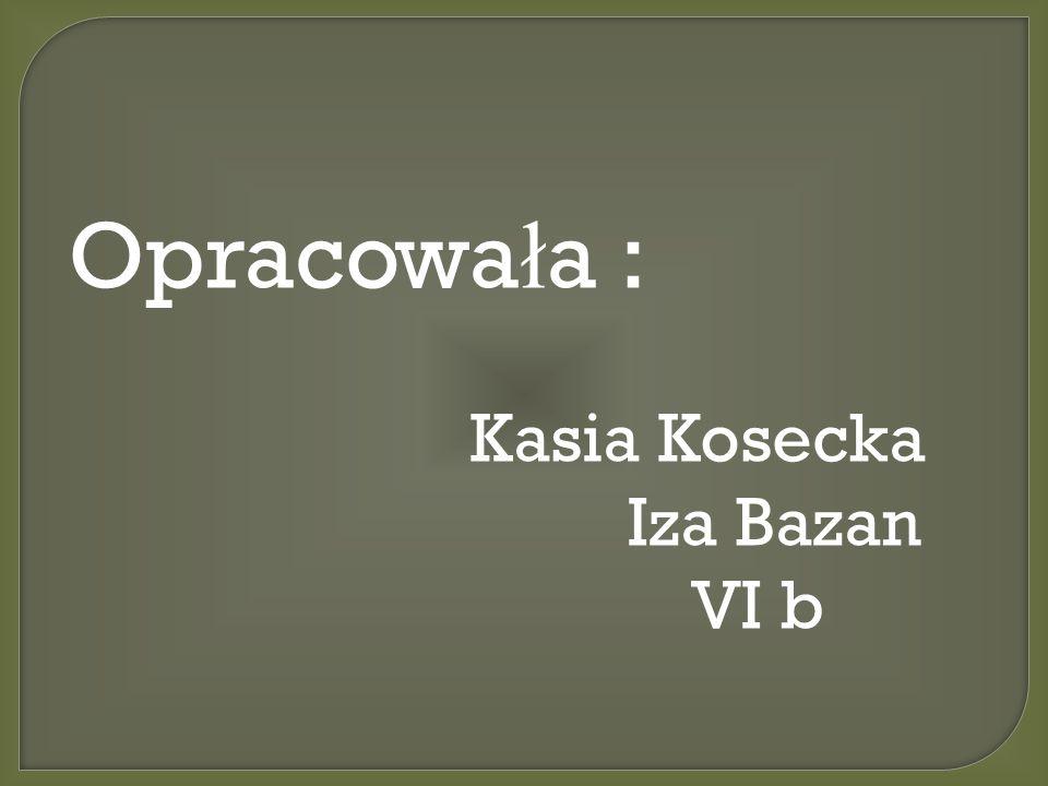 Opracowa ł a : Kasia Kosecka Iza Bazan VI b