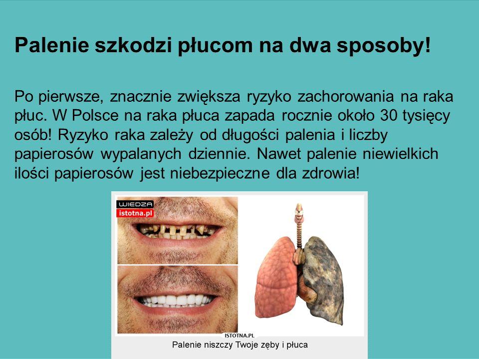 Palenie szkodzi płucom na dwa sposoby! Po pierwsze, znacznie zwiększa ryzyko zachorowania na raka płuc. W Polsce na raka płuca zapada rocznie około 30