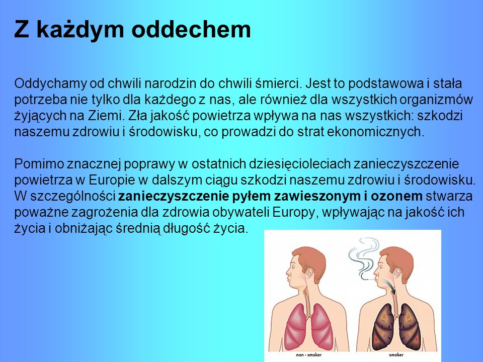 Na układ oddechowy wpływ mają zarówno wyziewy z samochodów, dym z kominów czy grilla, ale także dym papierosowy.