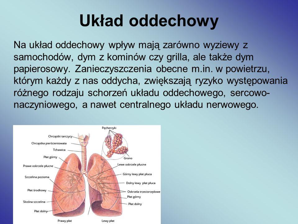 Na układ oddechowy wpływ mają zarówno wyziewy z samochodów, dym z kominów czy grilla, ale także dym papierosowy. Zanieczyszczenia obecne m.in. w powie
