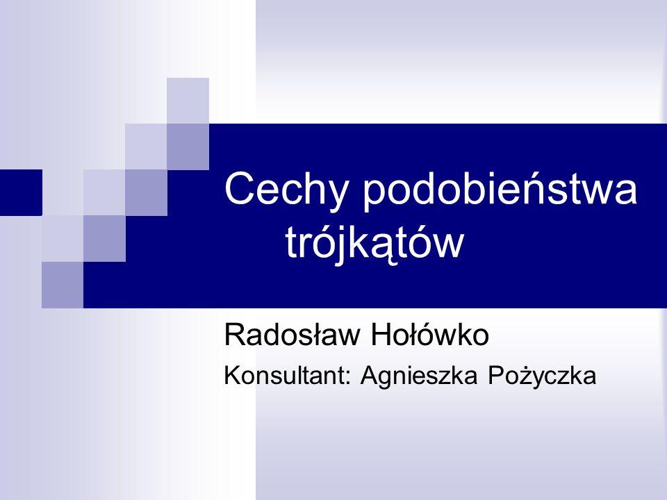 Cechy podobieństwa trójkątów Radosław Hołówko Konsultant: Agnieszka Pożyczka