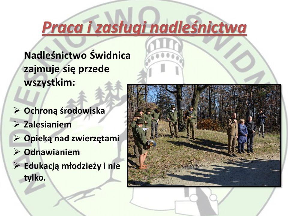 Praca i zasługi nadleśnictwa Nadleśnictwo Świdnica zajmuje się przede wszystkim:  Ochroną środowiska  Zalesianiem  Opieką nad zwierzętami  Odnawianiem  Edukacją młodzieży i nie tylko.
