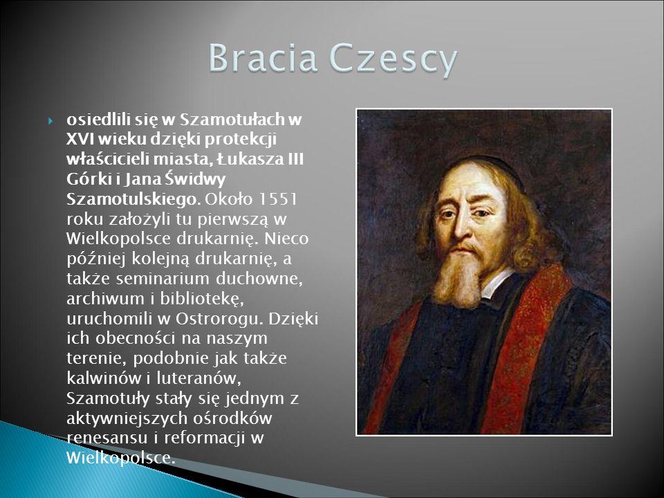  osiedlili się w Szamotułach w XVI wieku dzięki protekcji właścicieli miasta, Łukasza III Górki i Jana Świdwy Szamotulskiego.