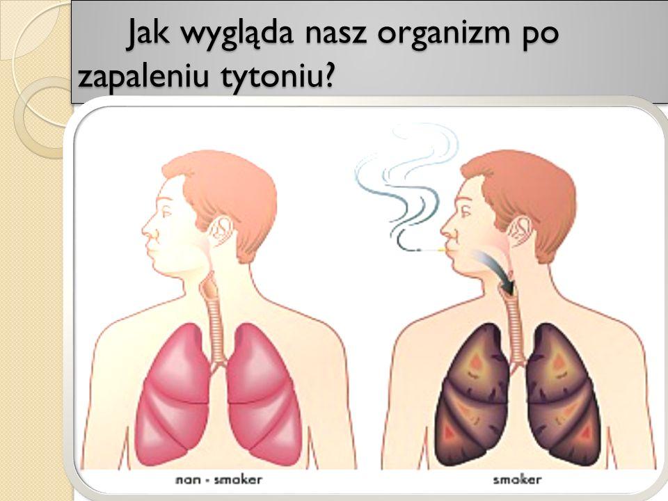 Jak wygląda nasz organizm po zapaleniu tytoniu? Jak wygląda nasz organizm po zapaleniu tytoniu?