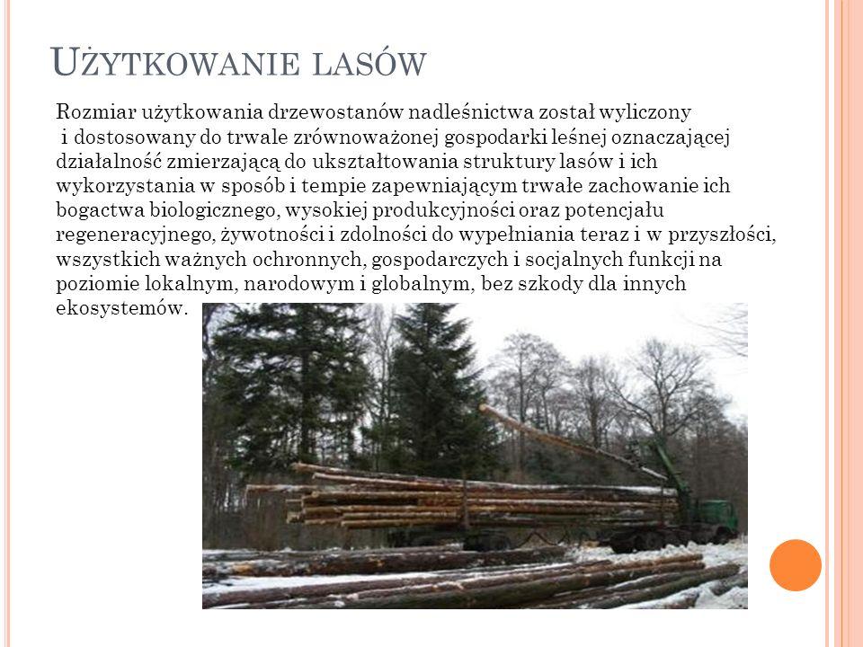 Rozmiar użytkowania drzewostanów nadleśnictwa został wyliczony i dostosowany do trwale zrównoważonej gospodarki leśnej oznaczającej działalność zmierz