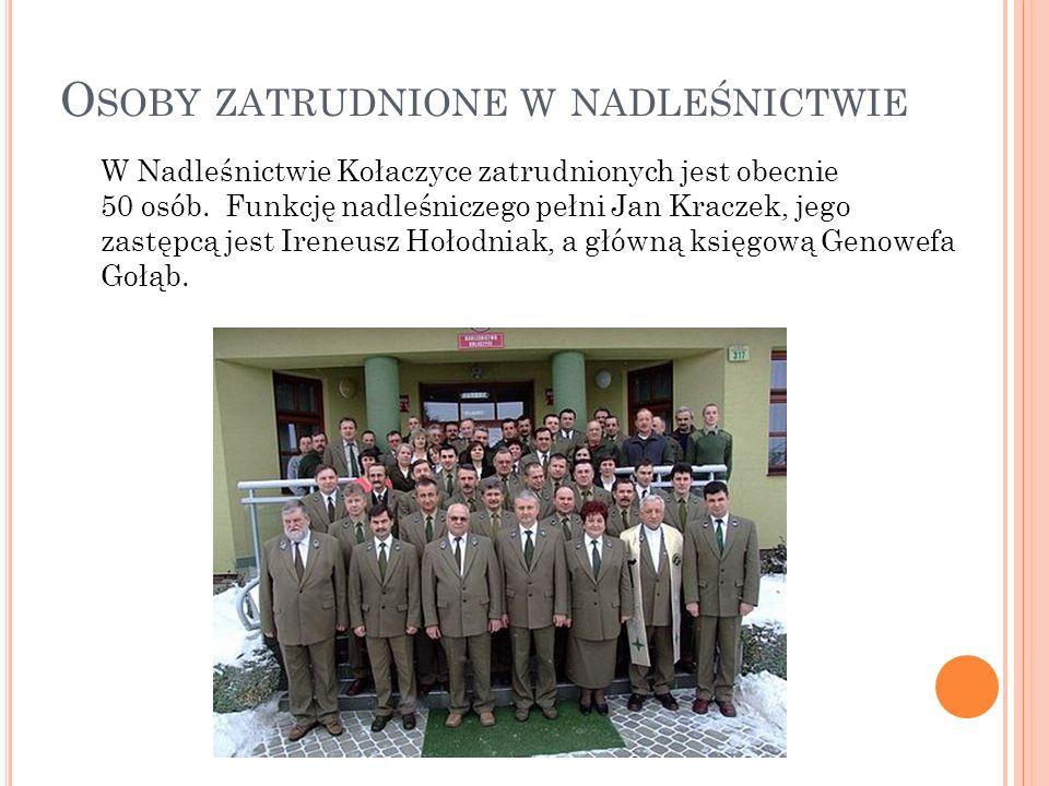 O SOBY ZATRUDNIONE W NADLEŚNICTWIE W Nadleśnictwie Kołaczyce zatrudnionych jest obecnie 50 osób. Funkcję nadleśniczego pełni Jan Kraczek, jego zastępc