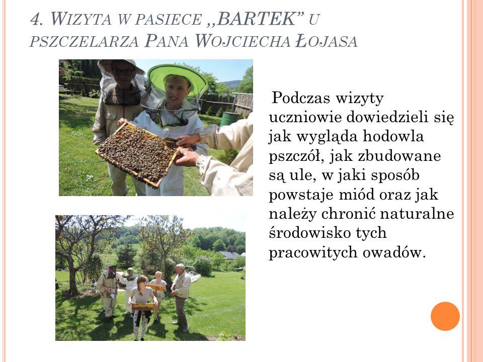 4. W IZYTA W PASIECE,,BARTEK'' U PSZCZELARZA P ANA W OJCIECHA Ł OJASA Podczas wizyty uczniowie dowiedzieli się jak wygląda hodowla pszczół, jak zbudow