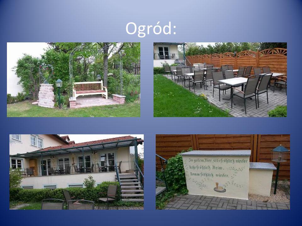 Ogród: