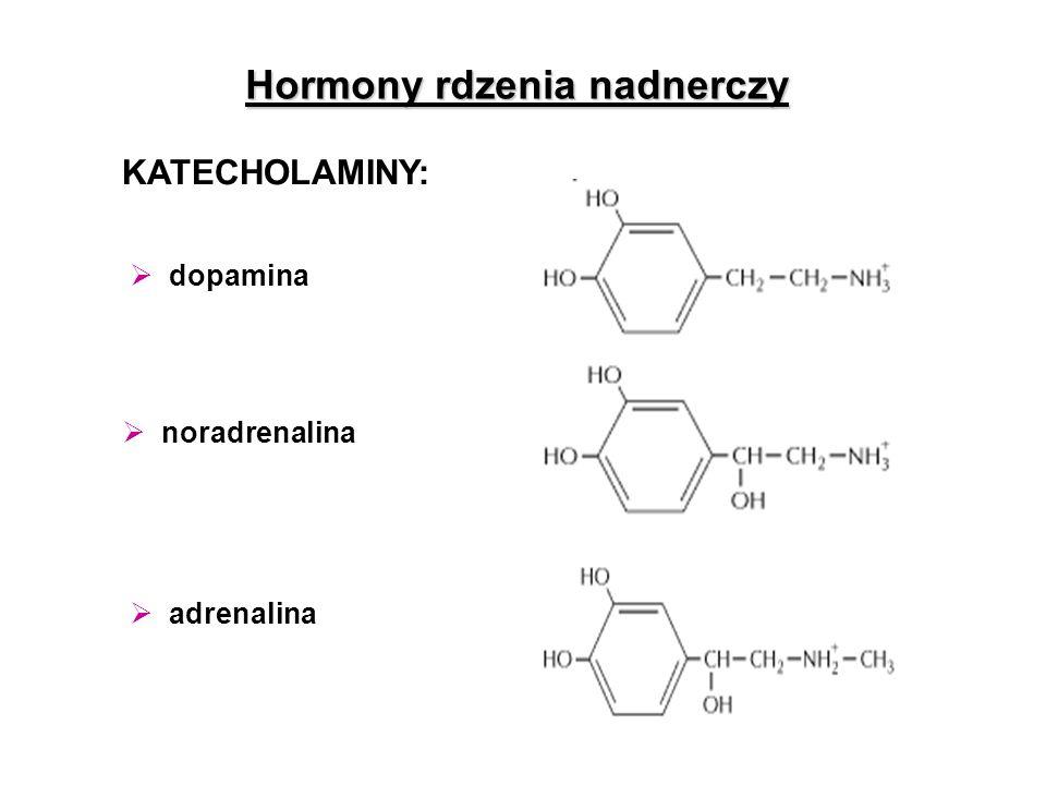 Hormony rdzenia nadnerczy  adrenalina KATECHOLAMINY:  noradrenalina  dopamina