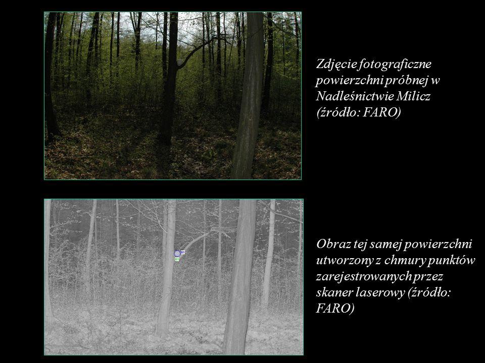 Zdjęcie fotograficzne powierzchni próbnej w Nadleśnictwie Milicz (źródło: FARO) Obraz tej samej powierzchni utworzony z chmury punktów zarejestrowanych przez skaner laserowy (źródło: FARO)
